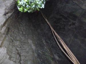 Pintu Masuk Gua Mon (dilihat dri bawah)